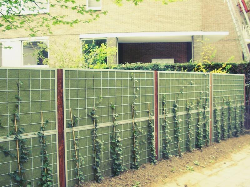 Dæmp gener fra trafikken med et støjhegn i din have